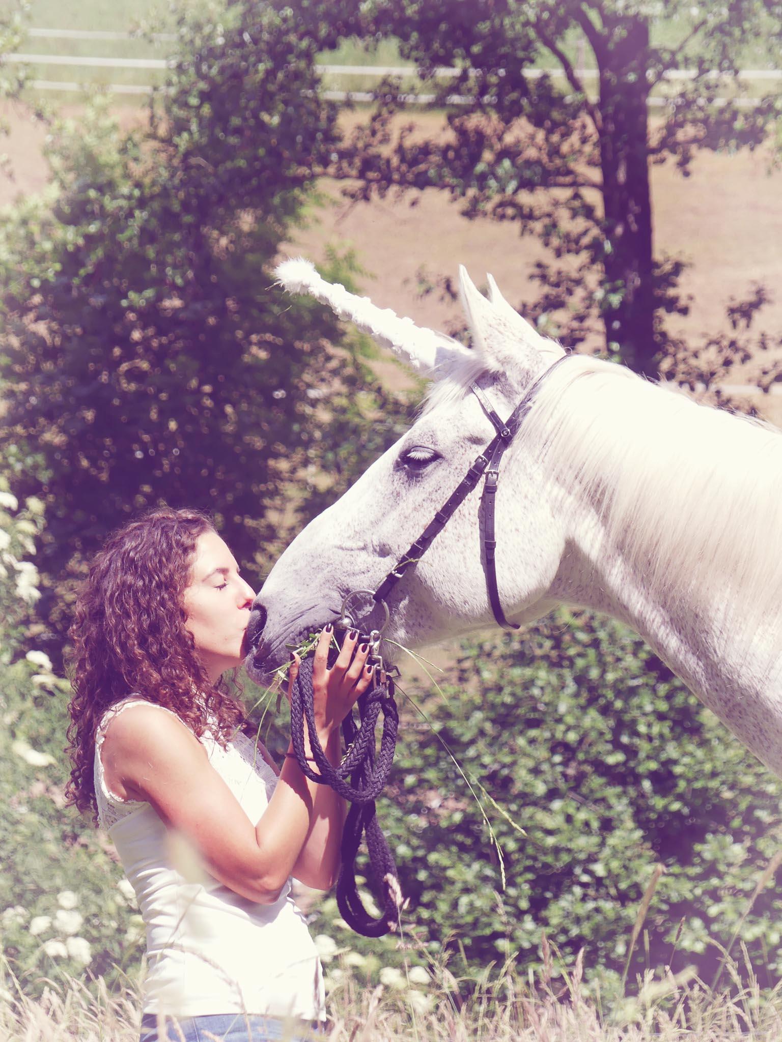 Pferde Fotoshooting buchen